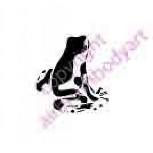 0305 frog